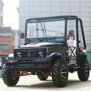 250cc Jeep with High Quality pictures & photos