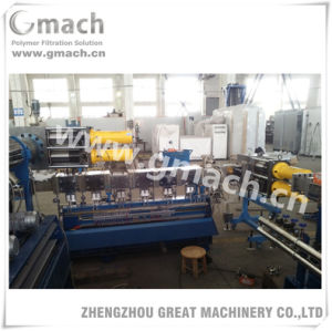 Automatic Continuous Screen Changer for PE Film Water Ring Pelletizing Machine pictures & photos