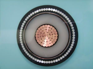 XLPE Insulated Medium Voltage Cable pictures & photos