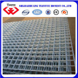 Welded Wire Mesh (TYB-40) pictures & photos