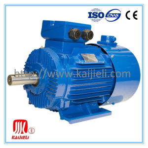 Y2 Series Electric Motor, Induction Motor, AC Motor pictures & photos