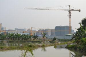 6t Qtz80 (TC6013B) and Maximum Height of 210m Construction Crane pictures & photos