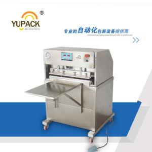 Yupack Single Chamber Vacuum Sealing Machine/Vacuum Packaging Machine pictures & photos