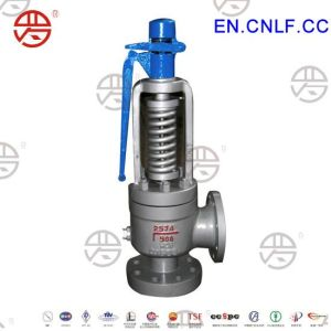 Lfgs-High Performance Safety Valve for Steam