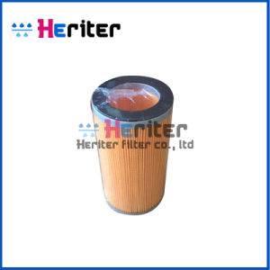 4405092910 or C10050 Air Filter pictures & photos