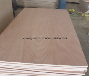 Hot Sale 4X8feet Commercial Plywood