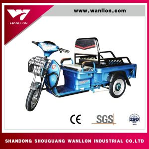 Made in China 3 Wheel Electric Adult Tricycle Cargo Tricycle Trike Adult Electric Tricycle pictures & photos