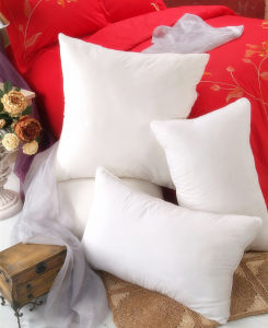 Kinds Sizes Pillows with Competitive Price
