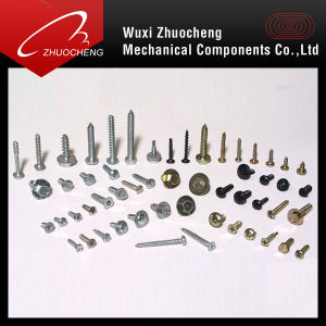 Screws Bolts Fasteners pictures & photos