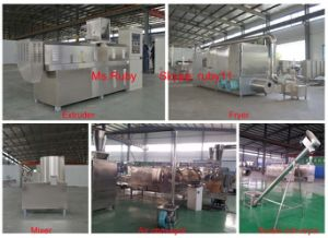 Corn Flakes Extruded Machine pictures & photos