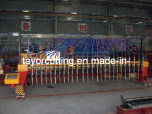 CNC Gantry Type Plasma & Flame Strip Slitting Machines pictures & photos