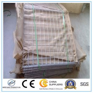 Best Selling Welded Wire Mesh Gabion Box /Gabion Basket pictures & photos