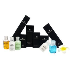 Top Selling Hotel Amenities Sets, Disposable Hotel Amenity Set, Luxury Hotel Supplies pictures & photos
