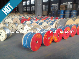 Plain Steel Wire Rope pictures & photos