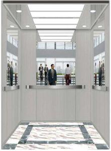 German Professional Vvvf Drive Home Villa Elevator (RLS-217) pictures & photos