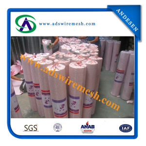 1/4 Inch Galvanized Welded Wire Mesh pictures & photos