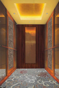 Economical Elevator with Mirror Finish pictures & photos
