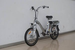 City Electric Bike TDN1101Z Silvery pictures & photos