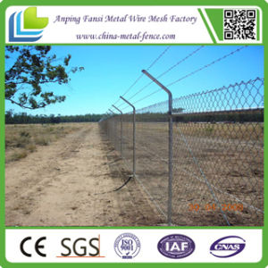 Very Popular Barbed Security Fence (manufacture) pictures & photos