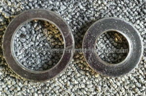 Spiral Wound Gasket Basic Type Wound Gaskets Without Inner&Outer Ring Gaskets pictures & photos