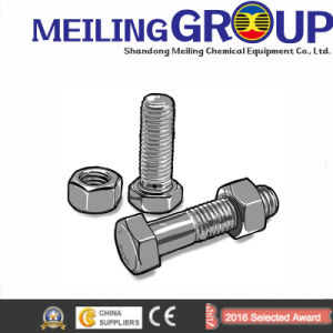 Stainless Steel /Carbon Steel Standard/Non-Standard /Customized Bolt Auto Fastener pictures & photos