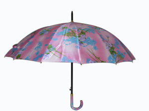 16k Satin Fabric Auto Open Stick Umbrella (SU018) pictures & photos