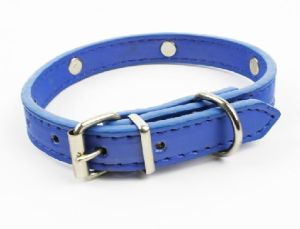 Pet Dog Puppy Fashion Collar (cl3001) pictures & photos