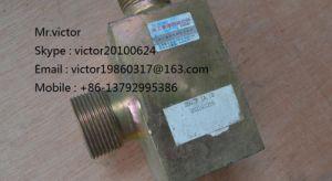 252101216 Xcg Sdlg Block LG936 LG956 Lw500k W300k Zl50g Zl30g