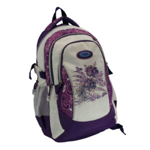 Leisure Laptop Backpack Sports School Bag pictures & photos