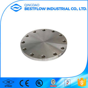 Carbon Steel Forged Steel Flanges pictures & photos