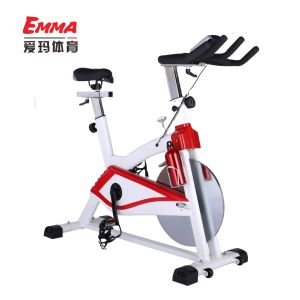 Spinning Bike (AM-S3001) pictures & photos