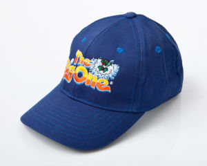 A02 Embroidered Baseball Cap pictures & photos