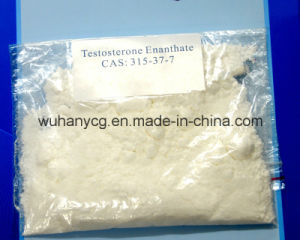 Testosterone Enanthate for Male Sex Hormone 99%Min