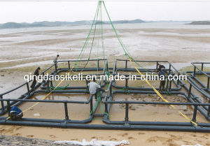 HDPE Square Fish Farming Cage for Nigeria pictures & photos
