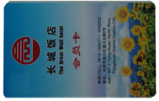 VIP Card / PVC Card / Plastic Card