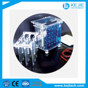 Electrophoresis Cell /Laboratory Instrument/ Analytical Instrument/Protein Molecule Analytical Instrument pictures & photos