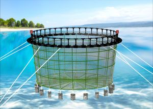 Floating Circular Fish Farming Cage with HDPE Brackets pictures & photos