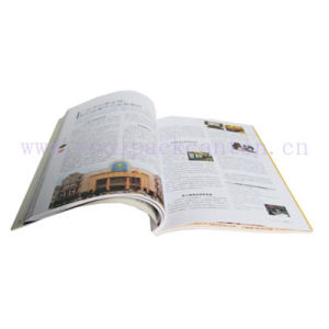 Catalogue Printing