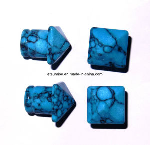 Semi Precious Stone Natural Crystal Turquoise Jewelry Earplug Earring pictures & photos