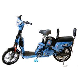 Electric Bike (TDR163F-4Z)
