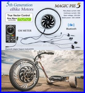 250W 500W 1000W E-Bike Hub Motor Kit with Sine Wave Controller pictures & photos
