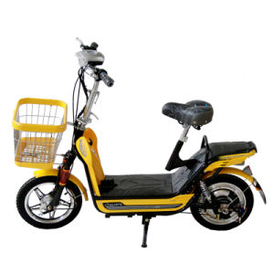 Electric Bike (TDR163-8CZ)