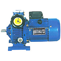 UD Series Cast-Iron Foof-Mounted Stepless Worm Gearbox