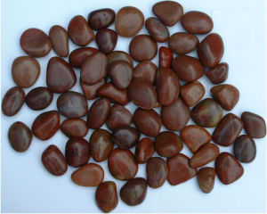 Polished Brown Pebble