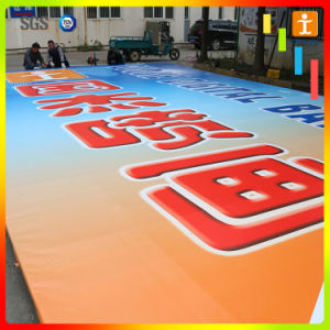 Factory Price Flex PVC Banner, Advertising Banner, Vinyl Banner (TJ-026) pictures & photos