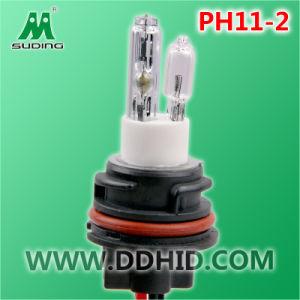 Motorcycle HID Xenon Lamp (pH11-2)