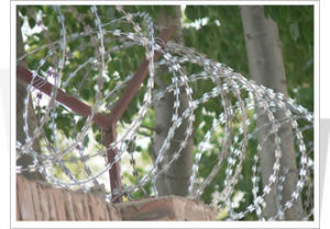 Razor Wire (hpwj-1004) pictures & photos