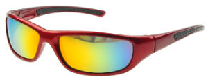 Safety Glasses, OEM Price Safety Glasses, Sport Bike Glasses (XQ151)