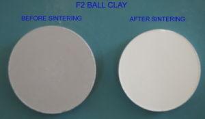 F2 Ball Clay