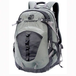 Student Outdoor Leisure Sports Travel School Daily Skate Backpack Bag pictures & photos
